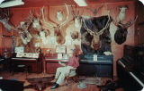 Postcard of Big Game Trophy Room of the J. Rigg Vaughn Piano Studio