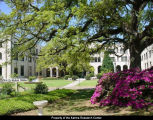 Hardy Hall, view of azaleas; 2003