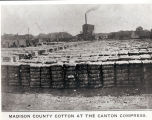 Madison County cotton at the Canton Compress